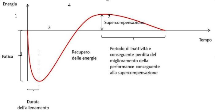 Curva di SuperCompensazione